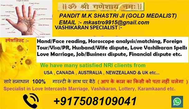 Love Problem Specialist Astrologer 917508109041