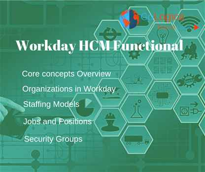 Workday HCM Functional online training