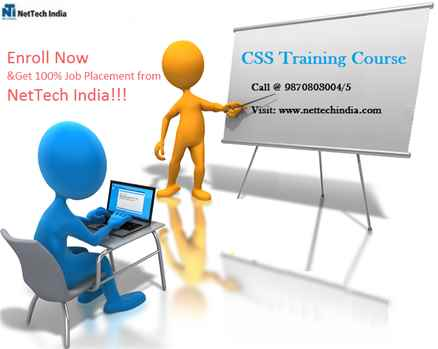 CSS Training Course  CSS Classes  NetTech India