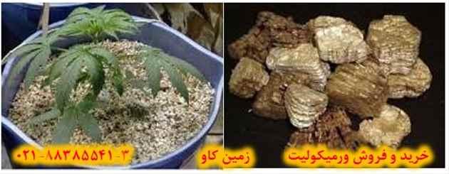 vermiculite trading