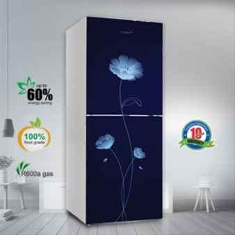 VSN GD Refrigerator RE-262L Blue Peony FL-TM